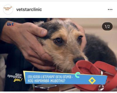 тв - VET STAR CLINIC - София, Люлин