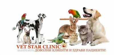 нашето мото - VET STAR CLINIC - София, Люлин
